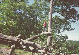 Man Posing On Removed Tree Limbs