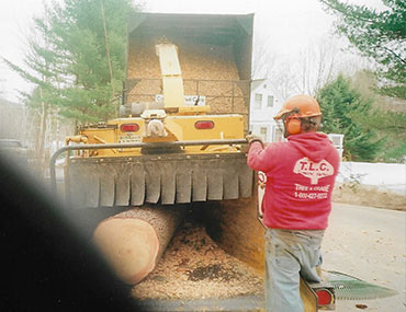 Man Operating Tree Shredder