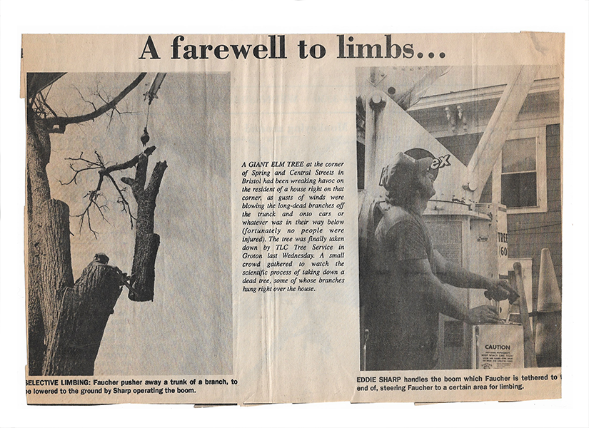 Newspaper Clipping #2 - A Farewell to Limbs